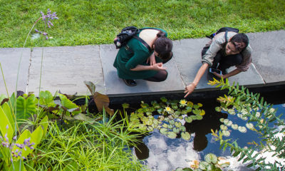 Two people outside at Tower Hill Botanical Garden
