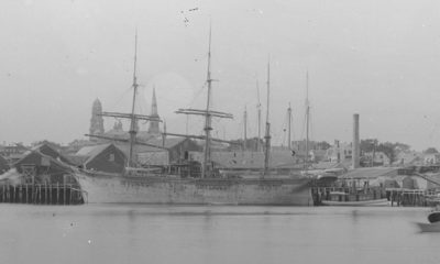 1880s ships in Gloucester Harbor. Smithsonian Institution Archives.