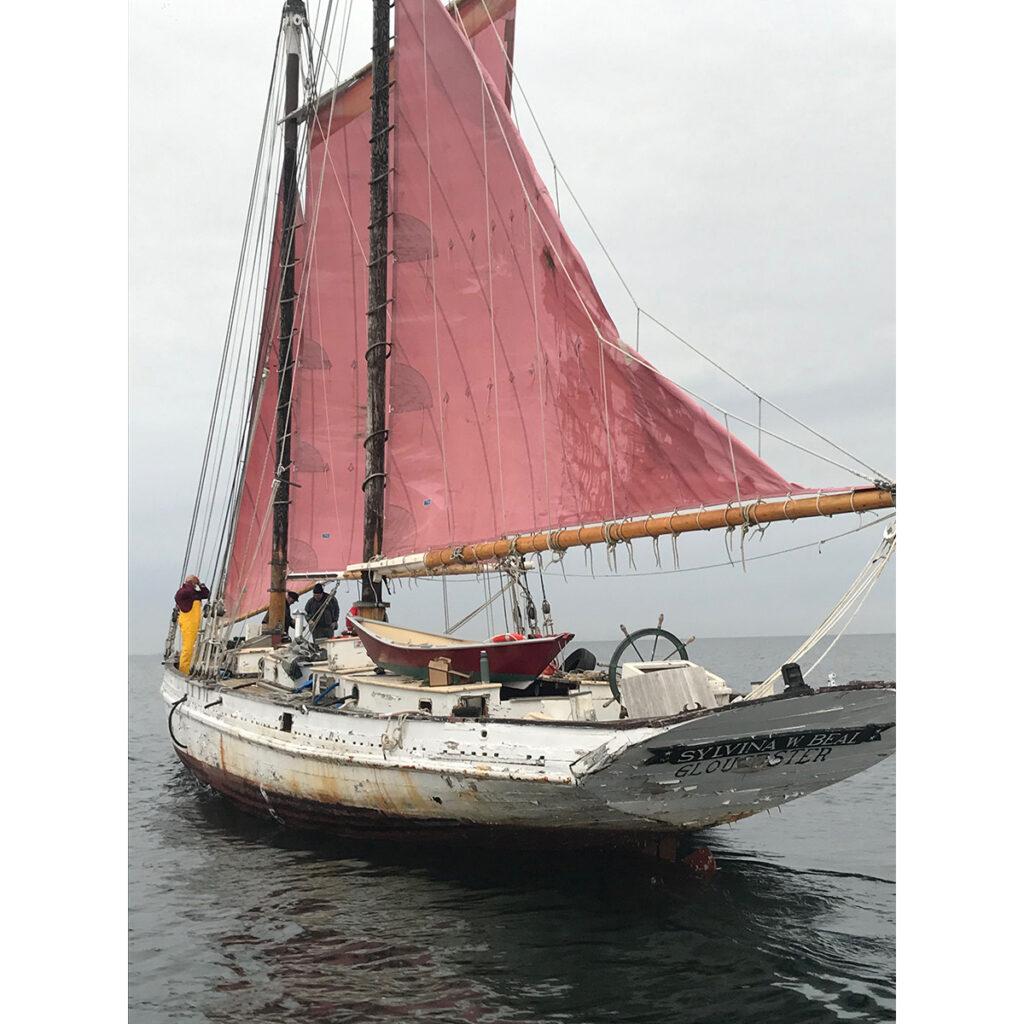 The schooner Beal on her way to Harold Burnham's shipyard. Photo courtesy of Harold Burhnam.