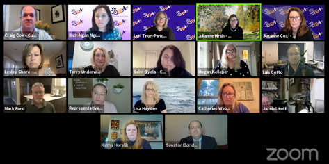 a grid of 17 people at a zoom meeting
